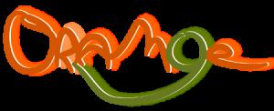 Groupe orange music le Logo, animations mariages dans le Luberon